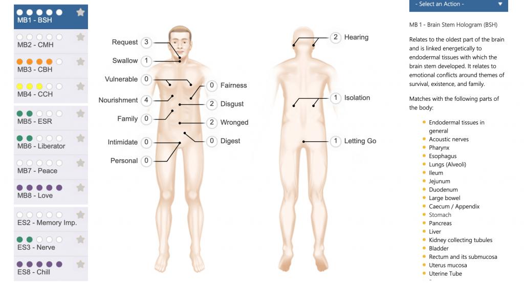 Decoding Wellness Mind Body Scan