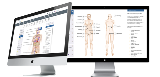 Decoding Wellness Body Field Scan